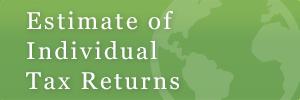estimate_of_individual_tax_return
